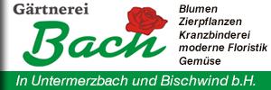 Blumen Bach